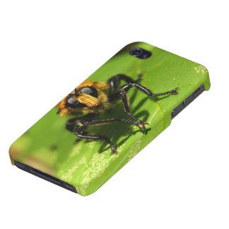 iPhone 4 Carcasa Mosca de ladrón