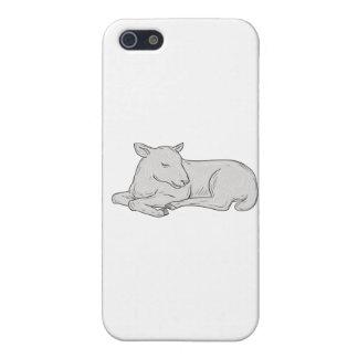 iPhone 5 Cárcasa Dibujo el dormir del cordero