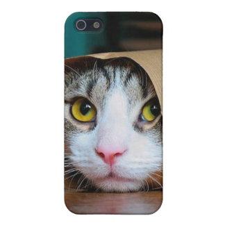 iPhone 5 Cárcasa Gato de papel - gatos divertidos - meme del gato -