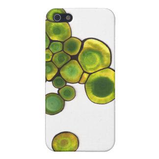 iPhone 5 Cárcasas Arte abstracto de las células verdes