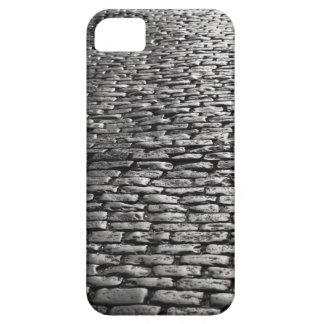 iPhone 5 PROTECTORES