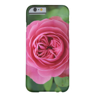 iPhone 6/6s, Barely There Roses Macro Funda Barely There iPhone 6