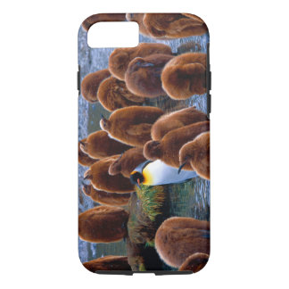 iPhone 7 de los polluelos de rey pingüino Funda Para iPhone 8/7