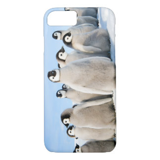iPhone 7 polluelos del pingüino Funda iPhone 7