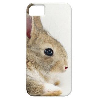 iPhone lindo del conejo de conejito 5 5S iPhone 5 Cárcasa