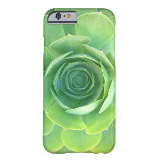 iphone seis casos suculentos funda barely there iPhone 6