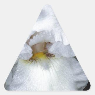 Iris barbudo en blanco pegatina triangular
