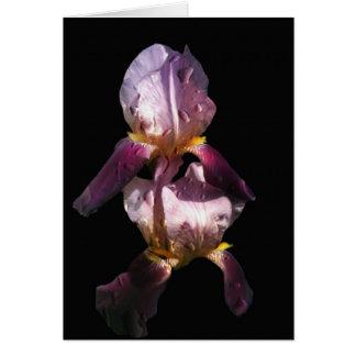 Iris de la mañana tarjeta