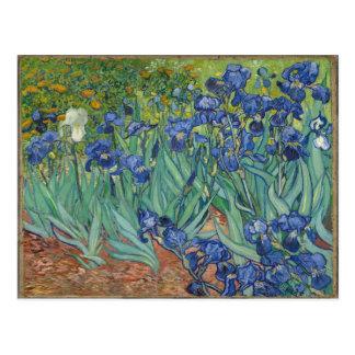Iris de Van Gogh Postal