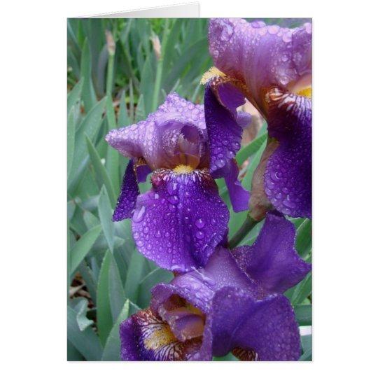 Iris en la lluvia tarjeta de felicitación