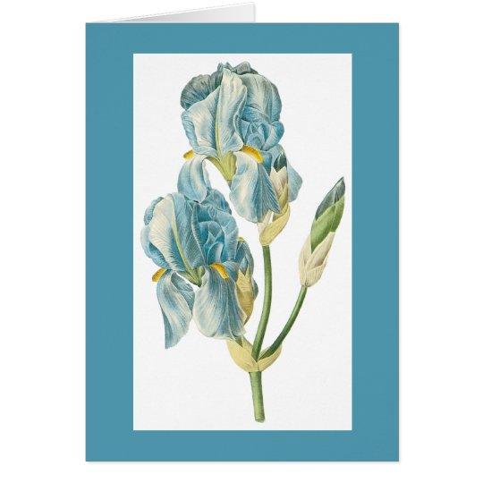 Iris Notecard de Redoute Tarjeta Pequeña