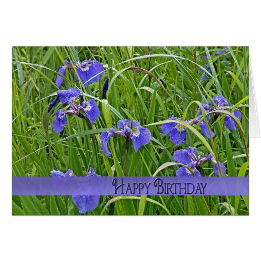 Iris púrpura salvaje tarjeta de felicitación