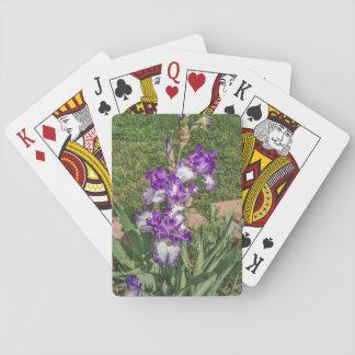 Iris púrpura y blanco - el día de madre, consigue baraja de cartas