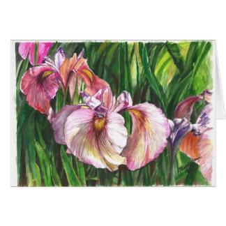 Iris rosados tarjeton