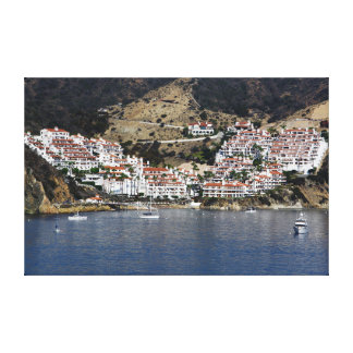 Isla de Catalina del arte de la pared