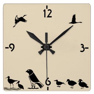 Isla de pájaro reloj cuadrado