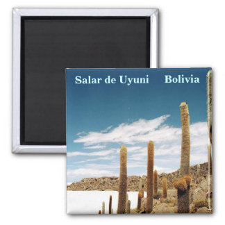 Isla del Pescado, Salar de Uyuni, Bolivia Imán Cuadrado