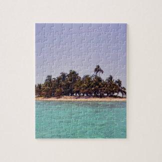 Isla tropical puzzle