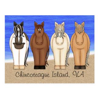 Isla VA de Chincoteague y postal de los potros