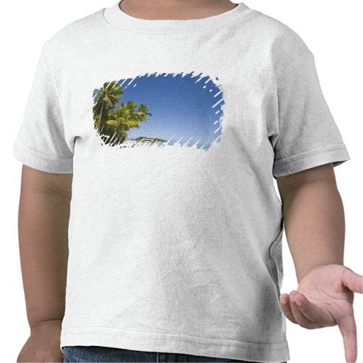 Islas de cocinero, Aitutaki. Viaje polinesio de la Camiseta