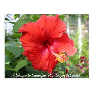 Islas Vírgenes de los E.E.U.U. - hibisco Postal
