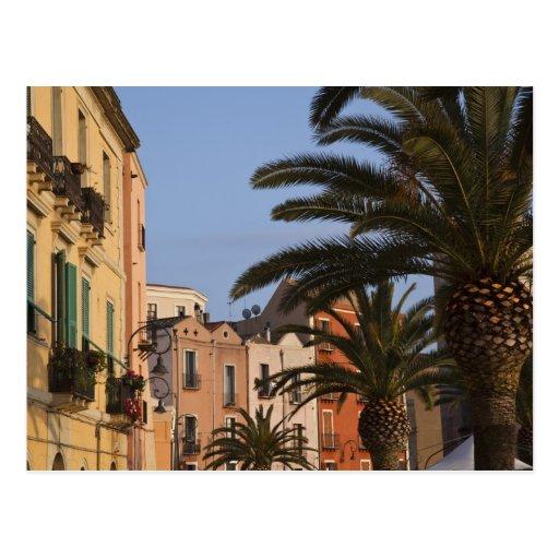 Italia, Cerdeña, Cagliari. Edificios y palmas Postales