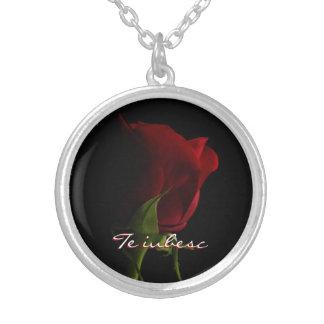 Iubesc del Collar-Te de la foto del rosa rojo Collar Plateado