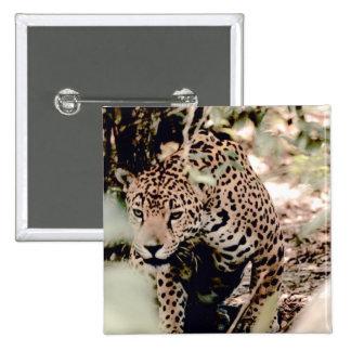 Jaguar en México Pin