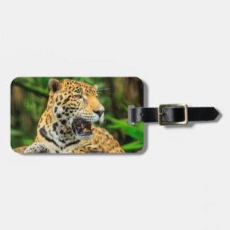 Jaguar muestra sus dientes, Belice Etiquetas Para Maletas