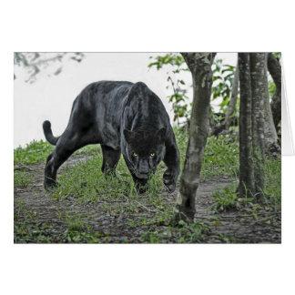 Jaguar negro que acecha la tarjeta