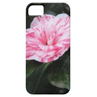 Japonica rayado solo rojo de la camelia de la flor funda para iPhone SE/5/5s