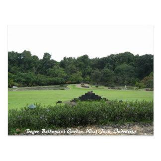Jardín de Bogor Bothanical Java del oeste I… Postal