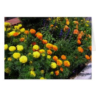Jardín de la maravilla - tarjeta de felicitación