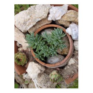 Jardín de rocalla miniatura postal