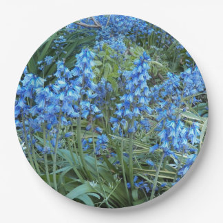 Jardín del Bluebell floral Plato De Papel
