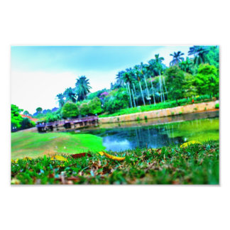 jardín del paisaje impresión fotográfica