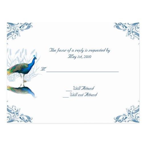 Jard n del pavo real en azul y blanco postal zazzle for Jardin azul canal 9
