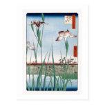 "jardín Hiroshige del iris de Horikiri del ""堀切の花菖蒲"" Tarjetas Postales"