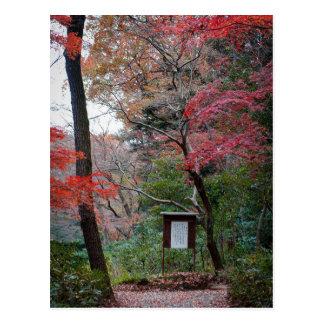 Jardín interno de la capilla de Meiji-Jingu Postal