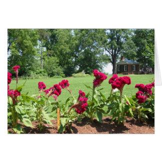 Jardín Notecard de Monticello Tarjeta Pequeña