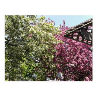 Jardín perezoso postal