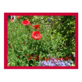 Postales duendes del jard n tarjetas postales for Amapola jardin de infantes palermo