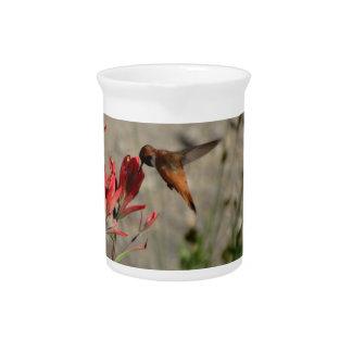 Jarra Colibrí rojo del wildflower