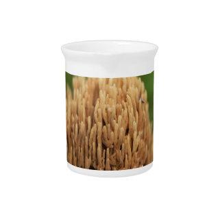 Jarra Para Bebidas Hongos coralinos de coloración verdes (abietina de