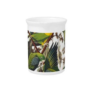 Jarra Para Bebidas Loro de Carolina - John James Audubon (1827-1838)