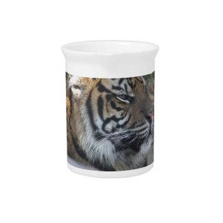 Jarra Para Bebidas Tigre