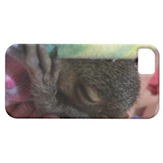 Jazmín Funda Para iPhone SE/5/5s