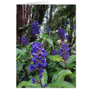 Jengibre azul hawaiano tarjeta de felicitación