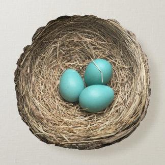 Jerarquía de los pájaros con los huevos azules cojín redondo
