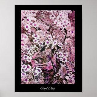 JERARQUÍA del PÁJARO, negro violeta rosado rojo bl Póster